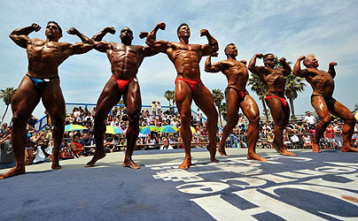 bodybuilder2_685146c